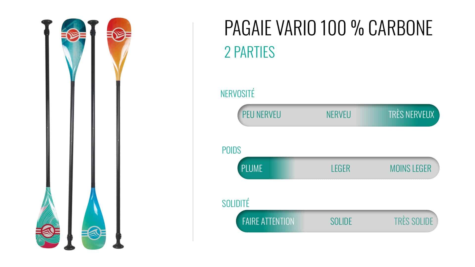 Pagaie Vario 100% carbone, 2 parties
